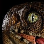 Chronicle Collectibles Life Size Jurassic Park Raptor Bust, the eyes
